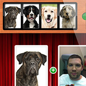 mee-as-a-dog-iphone-app-design